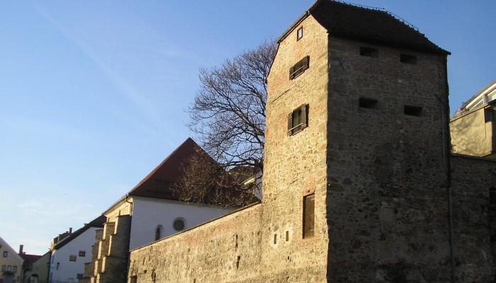 L'installation de juifs dans la forteresse médiévale de Maribor, près de la frontière autrichienne, remonte au moins au XIIIe siècle.